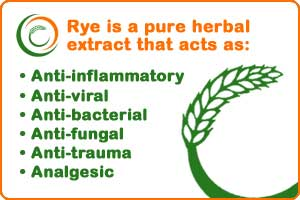 Rye is a herbal extract
